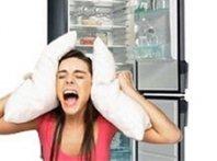 Холодильник сильно шумит