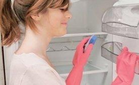 Как избавится от плесени в холодильнике?